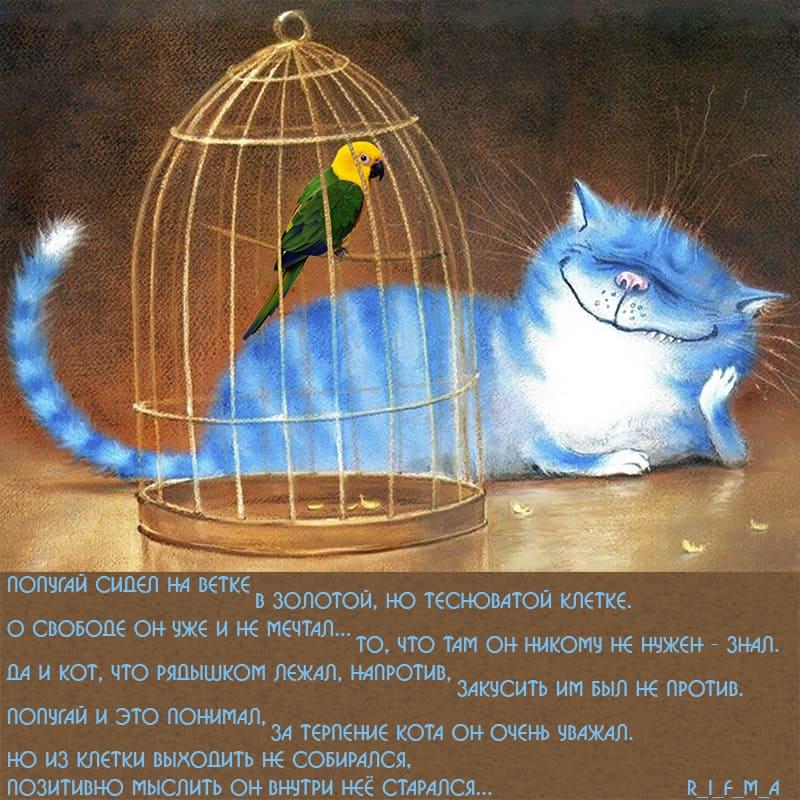 Попугай в клетке